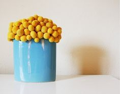 """billy buttons (also known as """"craspedia"""").  They are the sweetest, cutest li'l things I've seen in some time.  They are yellow.  They are tiny.  And they look kind of like cake pops."""