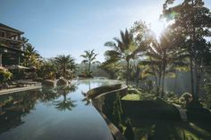 Infinity pool at Padma Resort Ubud, Bali