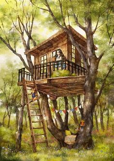 Aeppol | The House On Top Of A Tree