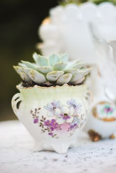 succulents planted in heirloom china #weddingdecor #vintagechina #floraldecor http://www.weddingchicks.com/2013/11/06/heirloom-wedding-inspiration/