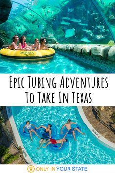 From The Most Relaxing Lazy Rivers To Thrilling Tubing Adventures With Stingrays, You Won't Want To Miss Out On This Family Friendly Fun. Summer Day Trip Ideas Vacation Unique Aquarium Kid Friendly Galveston Waco San Antonio Things To Do Staycation Texas Vacations, Family Vacation Destinations, Vacation Trips, Dream Vacations, Day Trips, Romantic Vacations, Vacation Places In Usa, Romantic Travel, Best Family Vacations