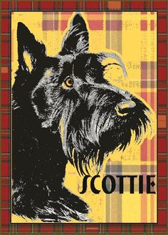 SCOTTISH TERRIER - Black Scottie Dog Art - an Original Signed Print by Wendy Presseisen - Plaid - Scotty - Pooch Print