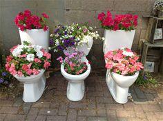Toiletpot met planten / Toilet planter - tuinieren.nl #trend #gardening