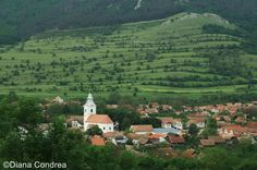 Best-known for its traditional white houses with green windows, the village of Rimetea is one of the best conserved rural attractions in Romania Green Windows, White Houses, Paris Skyline, Attraction, Most Beautiful, River, Landscape, Country, Outdoor