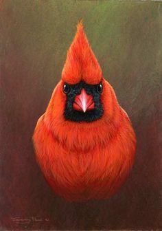 Cardinal by UK Wildlife Artist Jeremy Paul