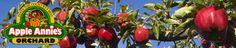 Apple Annies Orchards Willcox AZ.  Apple pie weekend and country craft fair September 22-23.  Pumpkin celebration Sept 29