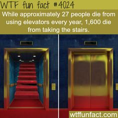 Elevators vs stairs, which one kills more? - WTF fun facts WOW I SHOULD TELL MY MUM THIS BECAUSE SHE ABSOLUTLEY REFUSES TO GO IN ELEVATORS OR LIFTS