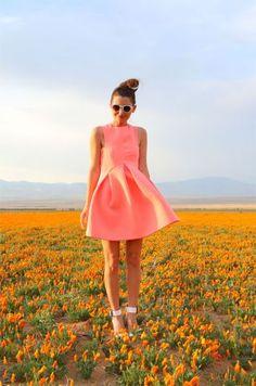 Wildflower Girls ♥✤LadyLuxury ♥✤
