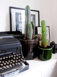 Home interior or exterior decoration using different plant species is a common practice nowadays. More and more people are recognizing … Small Cactus Plants, Cactus Plant Pots, Cactus Decor, Plant Decor, Small Room Decor, Decorating Small Spaces, Small Rooms, Wild West, Homemade Birthday Decorations