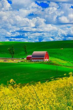 An absolutely wonderful red barn set in green fields and fluffy white clouds in a blue sky. Country Barns, Country Life, Country Roads, Country Living, Pole Barn House Plans, Pole Barn Homes, Farm Barn, Old Farm, Country Scenes