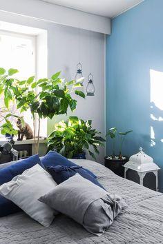 #bedroom Kodin jokaista huonetta piristää huonekasvijoukkio, myös makuuhuonetta. Miina-kissa nautiskelee auringosta sekä kameran läsnäolosta.