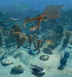 Cambrian ocean - cambrian.jpg 900×959 pixels