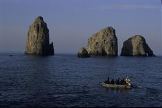 Malpelo Fauna and Flora Sanctuary, Columbia