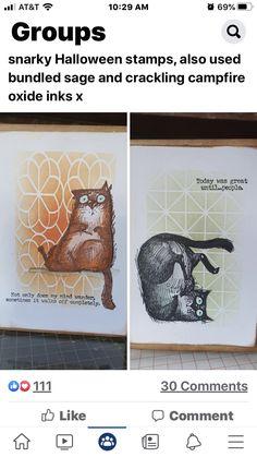 Crazy Bird, Crazy Cats, Crazy Holiday, Weird Holidays, Cat Cards, Funny Birthday Cards, Animal Cards, Halloween Cards, Tim Holtz