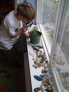 A window sill is the perfect space for a nature collection.  The natural light provides the perfect setting for inquiry.