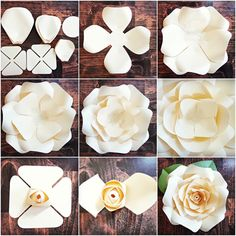 DIY Giant Rose Templates, Paper Rose Patterns & Tutorials, Paper Rose Flower Wall, SVG Cut files for Paper Flowers Discover thousands of images about Full rose paper flower template sets. Fun and easy to make! Step by step Regina rose tutorial. Giant Paper Flowers, Diy Flowers, Fabric Flowers, Paper Flower Wall, Paper Flowers How To Make, Paper Wall Flowers Diy, Diy Paper Flower Backdrop, Tissue Paper Decorations, Paper Wall Decor