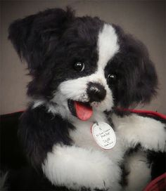 A Border Collie puppy by Rosalie Frischmann of Mill Creek Creations