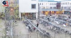 This is how they arrive at a school's bicycle parking facility in 's-Hertogenbosch (aka Den Bosch) in t.