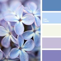 Lilac and violet colours combine beautifully with yellow hues. This pale yellow colour is suitable for bedroom, and you will create a special gentle comfor. Informations About Color Palette Pin Colour Pallette, Colour Schemes, Color Combinations, Arte Fashion, Color Balance, Design Seeds, Bedroom Colors, Blue Bedroom, Trendy Bedroom