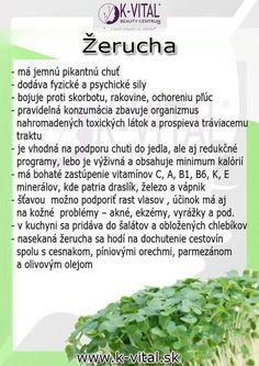 ♥ ZDRAVIE ♥ - Album používateľky miskakyska | Modrykonik.sk Parsley, Ale, Herbs, Food, Ale Beer, Essen, Herb, Meals, Yemek
