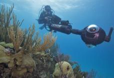 Catlin Seaview Survey - amazing 360 degree surveys of reefs
