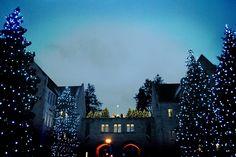 Christmas lights at the University of St. Thomas
