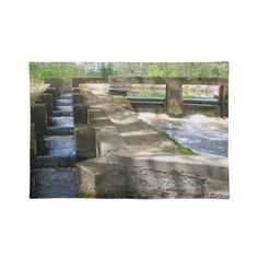 Fish Ladder ~ placemat