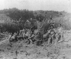 伊能嘉矩 台灣原住民寫真集:泰雅族圖譜 - 1906年