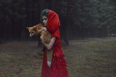 Deze wonderschone reeks foto's lijkt zo uit een sprookjesboek te zijn gegrepen Roomed | roomed.nl
