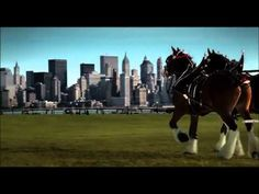 9/11 Budweiser Commercial That Only Aired Once.