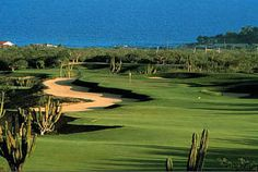 9 best Palmilla Golf Club images on Pinterest   Golf clubs  Golf     Palmilla Golf Club  Cabo San Lucas