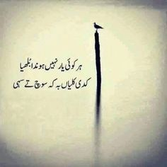 Sufi Quotes, Urdu Quotes, Poetry Quotes, Urdu Poetry, Beautiful Nature Scenes, Amazing Nature, Punjabi Poetry, Reality Of Life, Inspirational Quotes Pictures