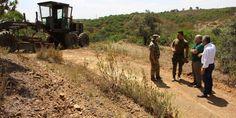 Castro Marim: Mais de 170 quilómetros de caminhos agrícolas reabilitados