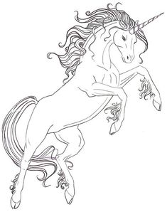 Unicorn Coloring Page for Adults Fresh Adult Coloring Pages Free Coloring Page Horse Coloring Pages, Unicorn Coloring Pages, Printable Adult Coloring Pages, Coloring Pages To Print, Colouring Pages, Coloring Pages For Kids, Free Coloring, Coloring Books, Dragon Coloring Page
