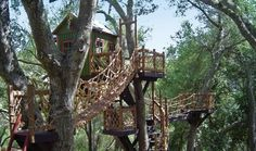 Barbara Butler: Treehouses FOR KIDS! : TreeHugger - Swiss Family Robinson here we come!!