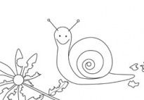 Snail - Coloring Page for pre-k and kindergarten kids from www.kigaportal.com