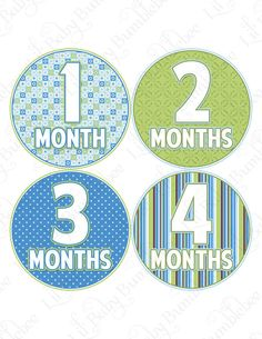 Photo prop month by month baby labels