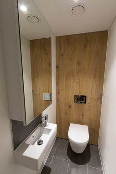 Wc Toilet Are At Commercial Office Location Vanity And