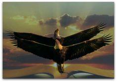 Isaiah 40:31 Isaiah 40 31, Ephesians 1, Eagle Wings, Heavenly Places, Prophetic Art, Eagles, Bald Eagle, Jesus Christ, Wisdom