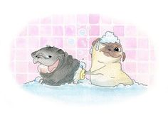 Rub-a-Chub-Chub, Two Pugs in a Tub! - Cute Pug Bath Art Print & Bathroom Decor from an original Ink and Watercolor painting by InkPug! on Etsy, $12.00