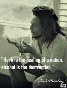 Our gov WANTS us to kill eachother by drinking. Have you ever seen someone get violent from pot? No. Do stoners go out & drive while high? No b/c they're too lazy to move!! Its really not that bad as everyone says/thinks it is. Just give it a freakin chance bc the pros greatly outweigh the cons