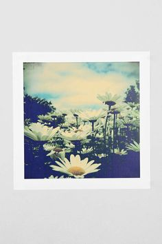 Olivia Joy St. Claire Daisy Love Art Print - Urban Outfitters