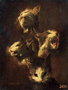 Study of a Cat's Head, Frans Snyders, 1609