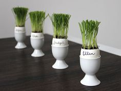 DIY Easter Eggs: Cat Grass Planter Placeholders for Your Easter Table >> http://blog.diynetwork.com/maderemade/how-to/easter-egg-diy-cat-grass-placeholders/?soc=pinterest