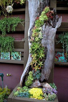 Wunderschöne Idee um einen kaputten Baumstamm zu erhalten.