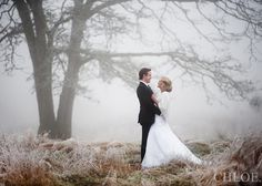 wedding fog