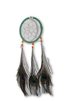Peacock Feather Dream Catcher 11in- Tools for Blessings, Clear Negative Energies, Smudge, Healing, Dreamwork, Peace