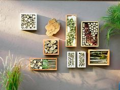8 Stylish Bug Hotels You call it garden art, insects will call it home. These chic bug hotels will offer … Bug Hotel, Hotel Sunset, Honey Bee Hives, Mason Bees, Colorful Plants, How To Get Warm, Garden Art, Garden Ideas, Cool Things To Make