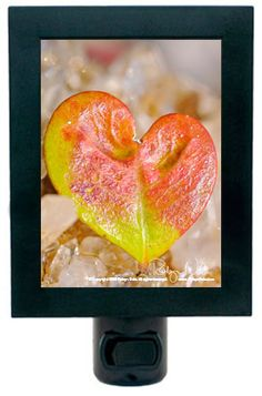 """Finding Love in Nature"" Heart Leaf Night Light by Robyn Nola"