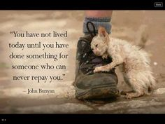 Helping others. Always help the animals! They are much loved by God and without Sin and they all go to heaven.